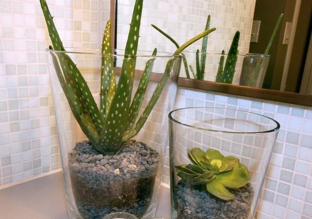 Slaapkamer Met Planten : badkamer met planten Archieven - Interieur ...