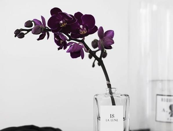 paarse accessoires slaapkamer – artsmedia, Deco ideeën