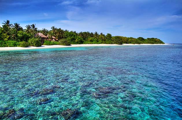 jungle slaapkamer maken : Soneva Fushi Jungle Reserve in de Maladiven ...