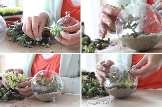 DIY-Succulent-Terrarium-Tutorial-A1