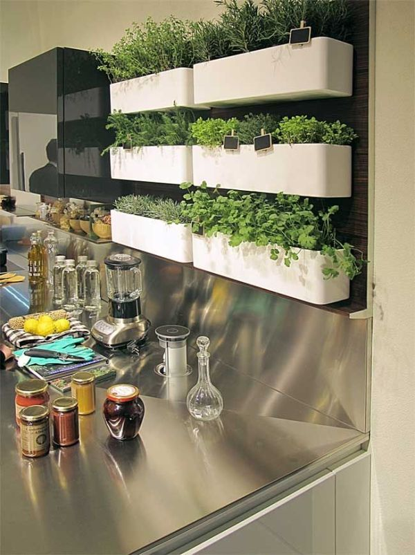 Kruiden in de keuken - Interieur Insider
