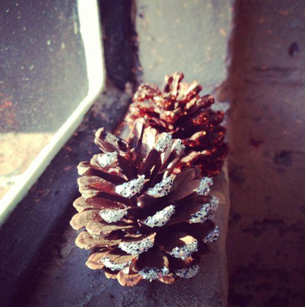 pinecones-glam