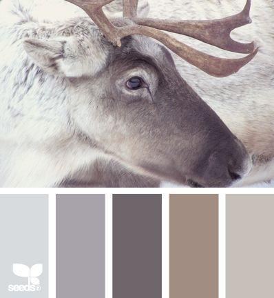 scandinavische inrichting kleuren