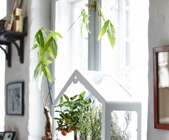 leuke accessoires vensterbank Archieven - Interieur Insider
