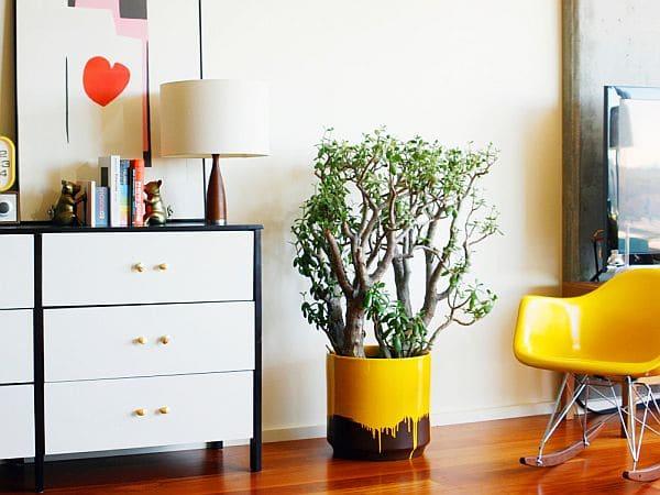 yellow-drip-planter4