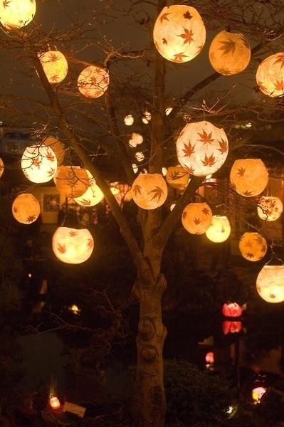 Winterlampjes