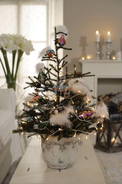 Kleine kerstbomen