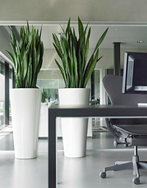 Grote vazen decoratie inspiratie tips 2018 - Decoratie kantoor ...