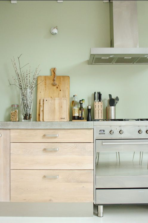 Groene Keuken Accessoires : Kitchen with Green Walls and Stainless