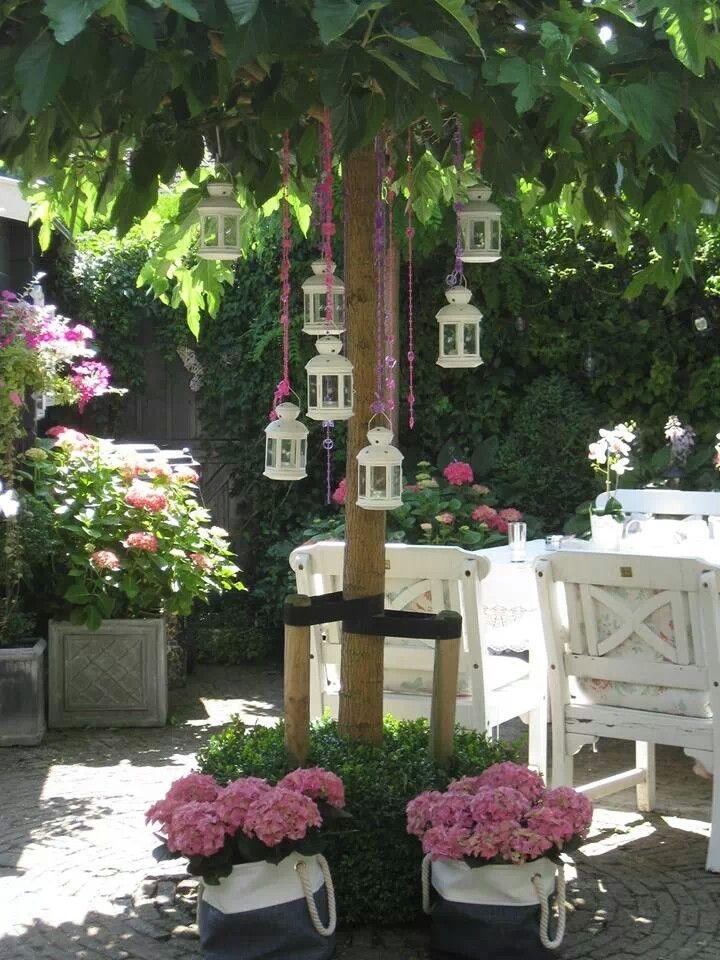 Bomen kiezen voor tuin interieur insider - Terras tuin decoratie ...