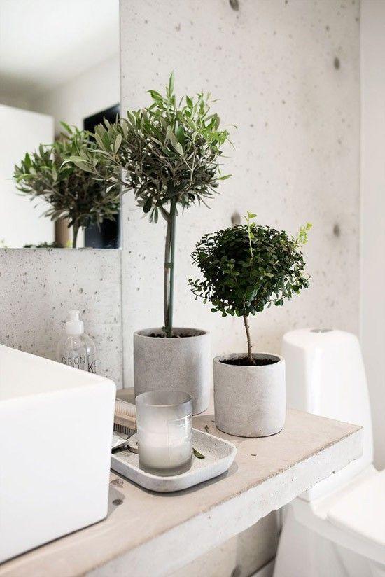 ... slaapkamer plant in badkamer plant in slaapkamer planten in slaapkamer