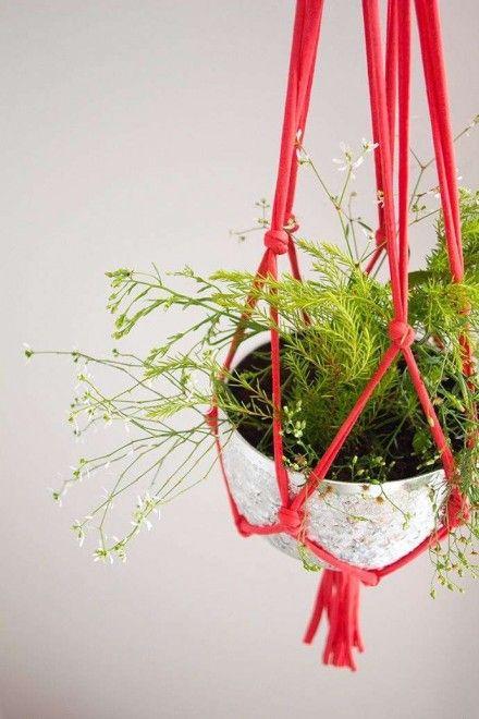 Tuindecoratie, hangplanten