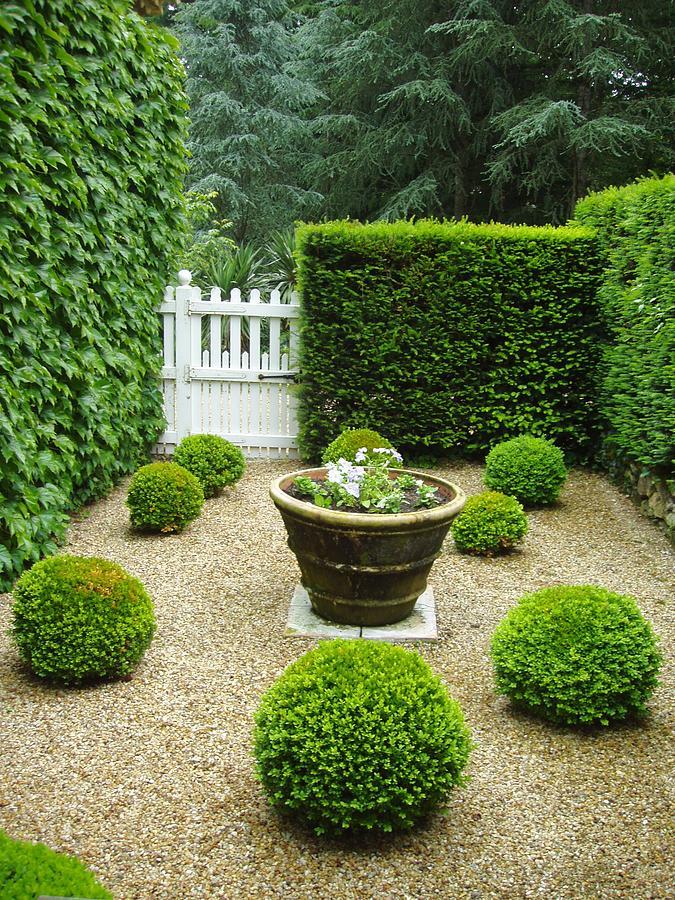 Franse tuin voorbeelden for Franse tuin