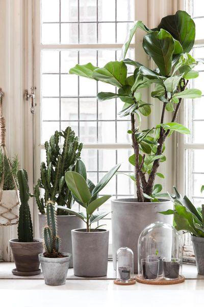 groene woonkamer