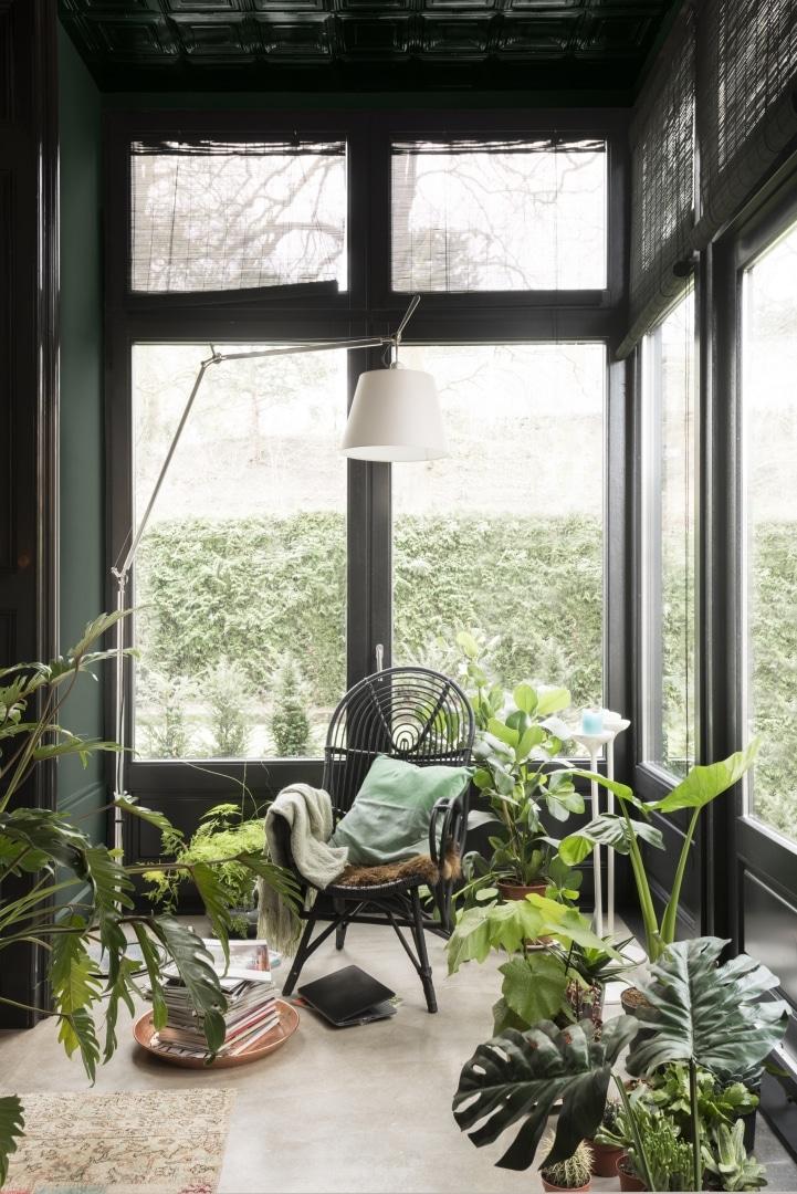 planten interieur woon trend 2017