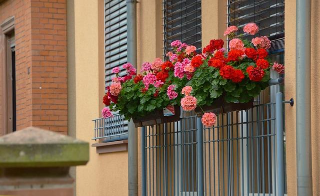 bloembakken-frans-balkon