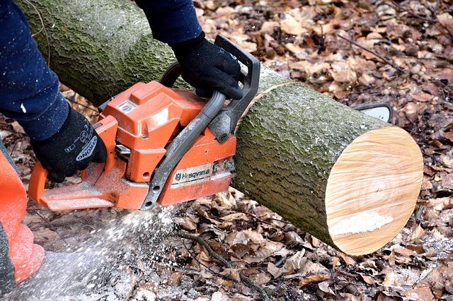 boomstam-kruk-zelf-maken