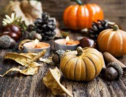 Herfst decoratie artikelen