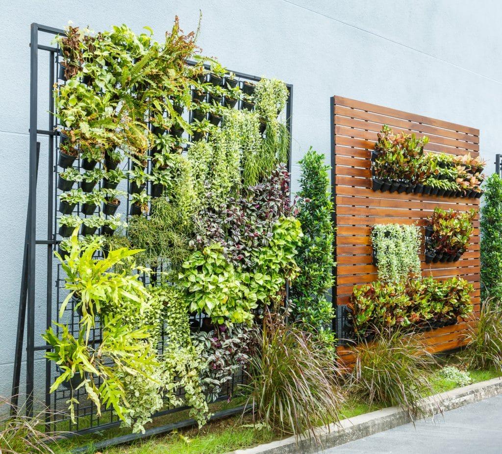 verticale tuin aanleggen schutting