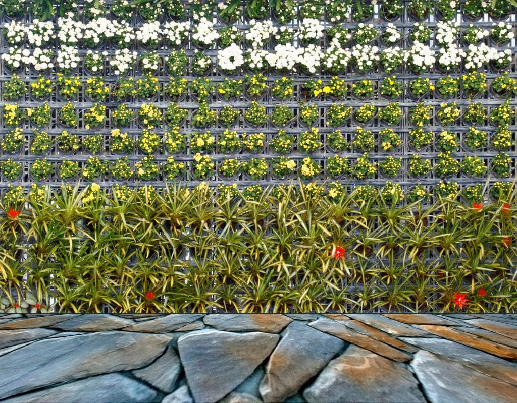 Verticale tuin aanleggen hoe doe je dat verticaal tuinieren diy